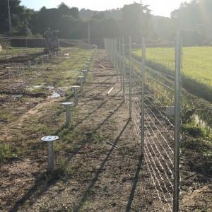 Field fence (1)